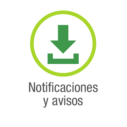 Notificaciones y avisos